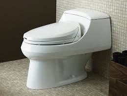 What Is A Toilet Bidet K 4709 C3 200 Elongated Toilet Seat With Bidet Functionality
