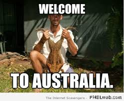 Welcome Meme - 7 welcome to australia toad meme pmslweb