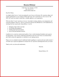 city attorney cover letter food inc essay