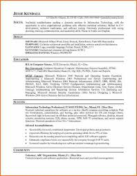 It Professional Resume Sample by 10 It Resume Template Budget Template Letter