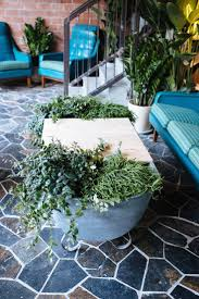 Terrarium Coffee Table top 25 best coffee table planter ideas on pinterest rustic