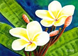 plumeria flowers hawaii tropical plumeria flowers 302 painting by donald k