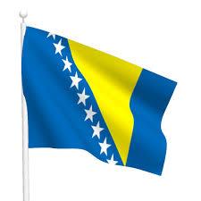 Flag Of Bosnia Bosnia And Herzegovina Flag Free Large Images
