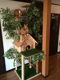 cat rage room making a natural looking cat tree cat tree cat and kitty