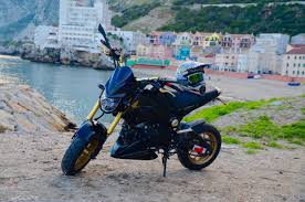 honda dylan vote now february 2016 honda grom of the month contest