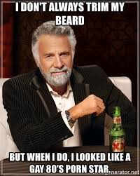 Gay Porn Memes - i don t always trim my beard but when i do i looked like a gay
