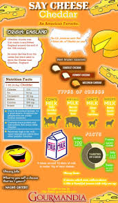 interesting facts about the first thanksgiving cheddar cheese facts infographic