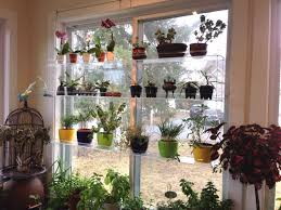 plant stand urban self sufficientist quick and easy windowelves