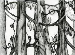 drawings susan cohen thompson