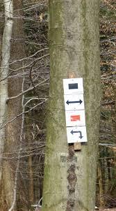 Bad Homburg Wetter Bad Homburg Rundwanderweg über Pelagiusplatz Zur Gickelsburg Raempel