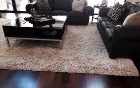 Persian Rugs Nz Carpets Rugs Of Nz Ltd Carpet Vidalondon