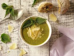 cuisiner l ortie soupe bio a l ortie et au parmesan recettes bio et fait maison