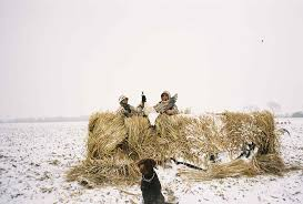 Homemade Goose Blind Goose Blind Hay Bale Just A Bale
