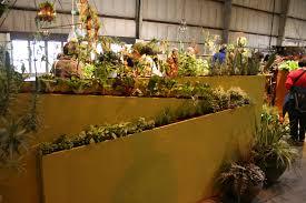 interior garden wall contained planter ideas for balcony gardens from the san g gen