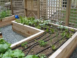 cedar planter box landscape traditional with drip lines edible