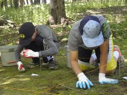 news u0026 updates forensic science