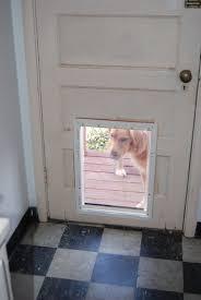doggy door glass door pet door idea of black glass door screen in white frame door