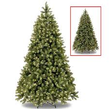 national tree 7 5ft bayberry spruce feel real pre lit christmas