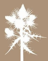 kron lume scandinavian lighting hanging star snowflake love these these lights are so pretty in