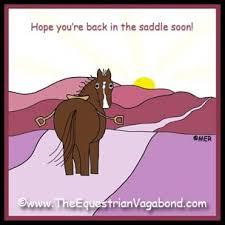 Soon Horse Meme - 17 best horse art images on pinterest equine art horse art and