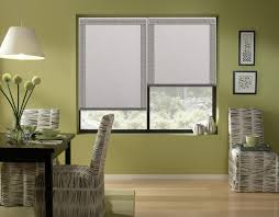 Blackout Cordless Roman Shade Phase Ii Options Phase Ii
