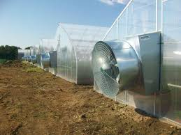 ventilation fans for greenhouses exhaust fan kitchen exhaust fan manufacturer from delhi