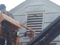bat removal polk county des moines ankeny wild animal removal
