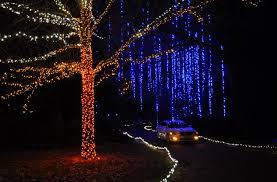 Norfolk Botanical Garden Lights 10 Botanical Gardens With Wow Factor Winter Transformations
