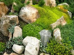nice rock garden design ideas on interior design for home