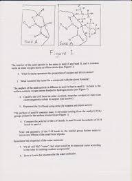 dna worksheets middle free worksheets library download