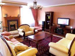 living modern living room design idea amusing modern tv room