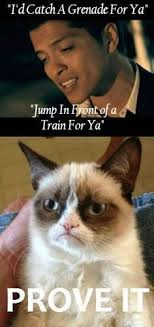 Grumpy Cat Yes Meme - pin by milagro rodriguez on funny pinterest grumpy cat