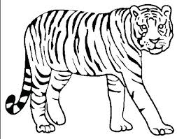 coloring page tigers tigers coloring pages free tiger coloring pages tiger shark coloring