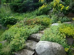 gallery of rock landscaping ideas backyard lamidge net mulch and
