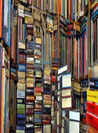 too many books not enough shelves a blog with book reviews that