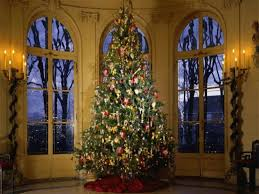 ideas and tree professionally decorated christmas trees ideas