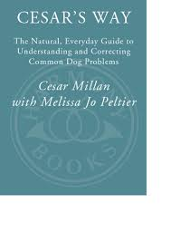 cesar u0027s way the natural everyday guide to understanding and
