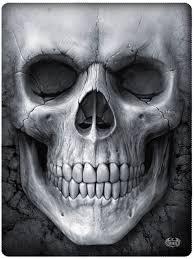 1160 best skulls images on skull skull and sugar skulls
