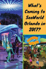 seaworld halloween sea world florida archives disney world disney cruise