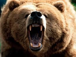 12apr14 running from bear