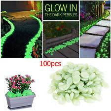 Glow In The Dark Planters by Glow In The Dark Pebbles Ebay