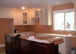 Benjamin Moore White Dove Kitchen Cabinets Color Forte July 2010