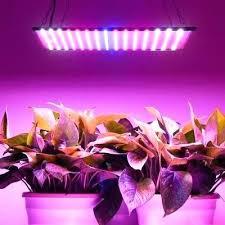 plant grow lights lowes led grow lights lowes aprendeafacturar info
