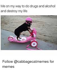Any Drugs Or Alcohol Meme - me on my way to do drugs and alcohol and destroy my life follow for