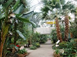 Michigan Botanical Gardens Indoor Matthaei Botanical Gardens Conservatory Arbor