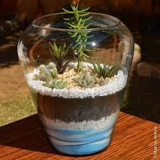 resume modernos terrarios suculentas 61 mejores imágenes de jardim japones en pinterest jardinería