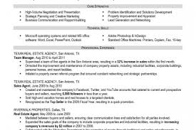 Financial Advisor Resume Examples by Real Estate Loan Officer Resume Reentrycorps
