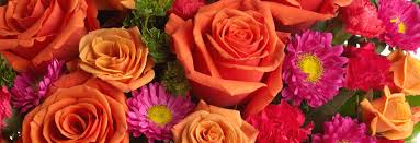Flower Shops In Downers Grove Il - gifts and bouquets by phillip u0027s flowers chicago and suburbs