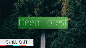 deep forest mix youtube