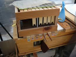 backyard bee hive blog supering a top bar hive